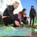 Месячник по благоустройству в Брестской области