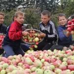 Яблочный время