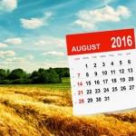 Изменения с августа в Беларуси