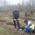 Лес подрос за неделю на 48 тысяч деревьев. И это только в Ляховичском районе