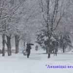 В зимнем режиме /фото/